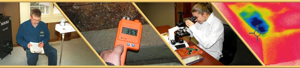 Mold Testing -- Sioux Falls, South Dakota